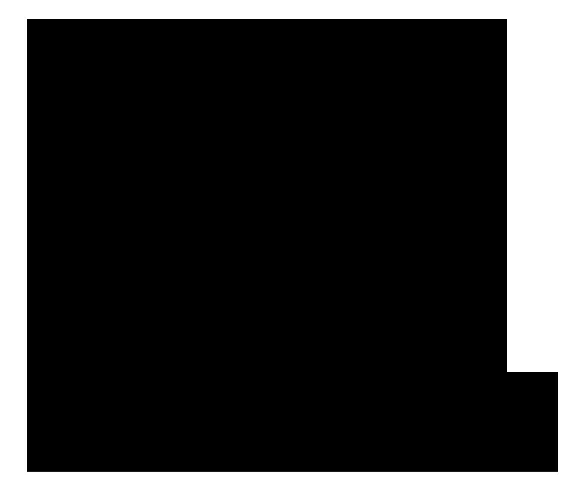Monkey47 Logo
